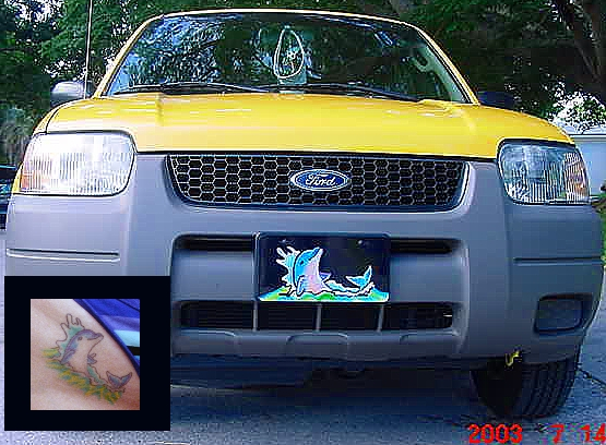 airbrushed license plates